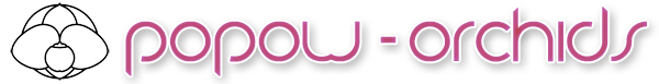 POPOW-ORCHIDS-Logo